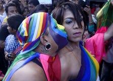 Regenboogkus Stock Afbeeldingen