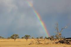 Regenbooglandschap Stock Foto