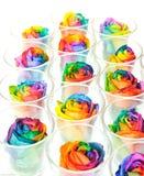 Regenboogrozen in ruw Stock Fotografie