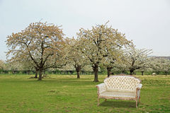 Regency chaise in orchard Royalty Free Stock Image