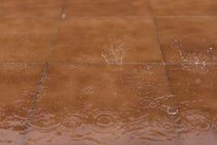 Regendalingen op bruine vloer Nat seizoen, de lente, de herfst of de winter Stock Foto's