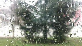 Regendalingen op de oppervlakte van vensterglazen met bewolkte achtergrond Natuurlijk Patroon van regendruppels Het drijven in re stock video