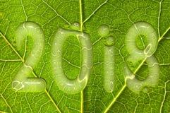 2018, regendalingen op een groene bladachtergrond, het milieuconcept van 2018 Royalty-vrije Stock Afbeelding