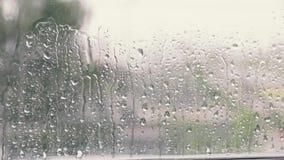 Regendalingen op een venster stock footage