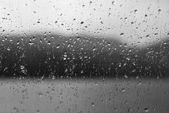 Regendalingen op een venster of waterdalingen op grasachtergrond stock foto's
