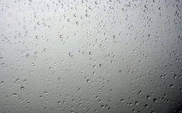 Regendruppel Stock Foto