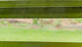 regendruppel Royalty-vrije Stock Afbeeldingen