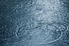Regendruppels Royalty-vrije Stock Afbeelding