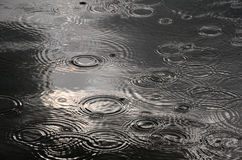 Regendruppels in de rivier Stock Foto's