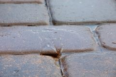 Regendruppels die op de Tegels van het Pooldek ploeteren Royalty-vrije Stock Foto