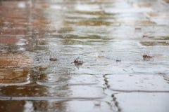 Regendruppels die op de Tegels van het Pooldek ploeteren Stock Fotografie