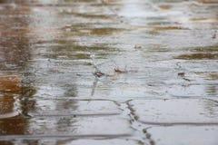 Regendruppels die op de Tegels van het Pooldek ploeteren Stock Afbeeldingen