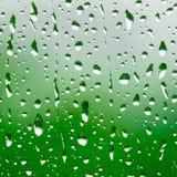 Regendruppels en groen Royalty-vrije Stock Foto