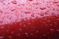 Regendruppels op auto Stock Fotografie