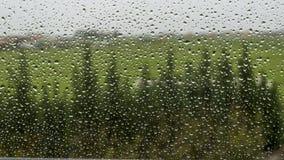Regendruppels op het venster stock foto's
