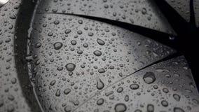Regendruppels op zwart rubber stock fotografie