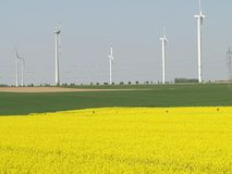 Regenerative energy sources. Wind energy and rape, regenerative energy sources Royalty Free Stock Photography