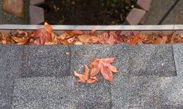 Regengosse auf dem Haus verstopft mit Blättern lizenzfreie stockbilder