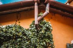 Regengossensystem und Dachschutz Lizenzfreie Stockfotos