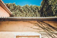Regengossensystem und Dachschutz Lizenzfreie Stockbilder