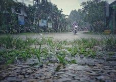 Regenjahreszeit kommt in Thailand Stockfotos