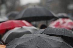 Regenparaplu met regendalingen Royalty-vrije Stock Foto