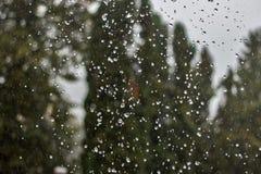 Regenrückgänge fallen ununterbrochen mit Unschärfegrün-Naturhintergrund stockbild