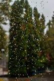 Regenrückgänge fallen ununterbrochen mit Unschärfegrün-Naturhintergrund stockbilder