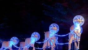 Regenrotwildweihnachtsfest auf Nacht Lizenzfreie Stockbilder