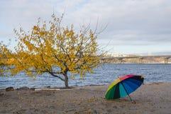 Regenschirm auf der Flussbank Stockbilder
