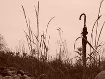 Regenschirm auf Hügel stockfoto