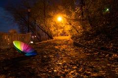 Regenschirm im Nachtherbstpark Stockfotos