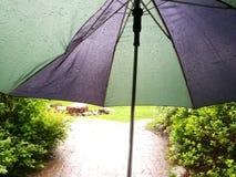 Regenschirm im Regen Lizenzfreie Stockfotografie