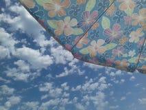 Regenschirm mit Blumenmuster Stockfotografie