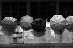 Regenschirm-Revolution in der Damm-Bucht Stockbild