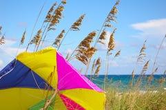 Regenschirm-Strand Stockfotos