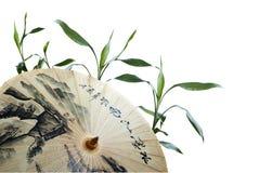 Regenschirm und grüner Bambus Stockfoto