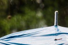 Regenschirm und Regen fällt, um herauf Hintergrund zu schließen Stockfotografie