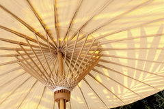 Regenschirm unter dem Schatten des Baums Lizenzfreies Stockfoto