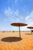 Regenschirme auf sandigem Strand Stockfotografie