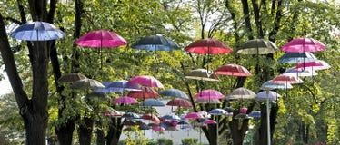 Regenschirme, die an den Bäumen hängen Stockbild