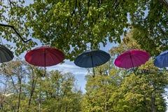 Regenschirme, die an den Bäumen hängen Lizenzfreie Stockbilder