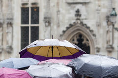 Regenschirme einer touristischen Gruppe Stockfotografie
