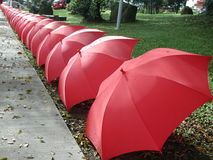Regenschirme in einer Zeile Lizenzfreie Stockfotografie