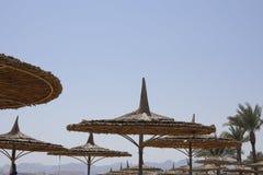 Regenschirme eines Strohs auf dem Strand des Roten Meers Stockbild