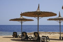 Regenschirme eines Strohs mit deckchairs auf dem Strand des Roten Meers Lizenzfreies Stockbild