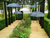 Regenschirme im Garten stockbild