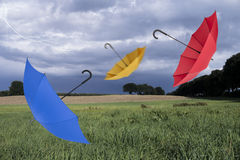 Regenschirme und Landschaft Lizenzfreies Stockfoto