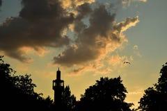 Regenten parkerar solnedgång Royaltyfria Bilder