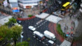 Regentropfen auf dem Fenster Stockbild